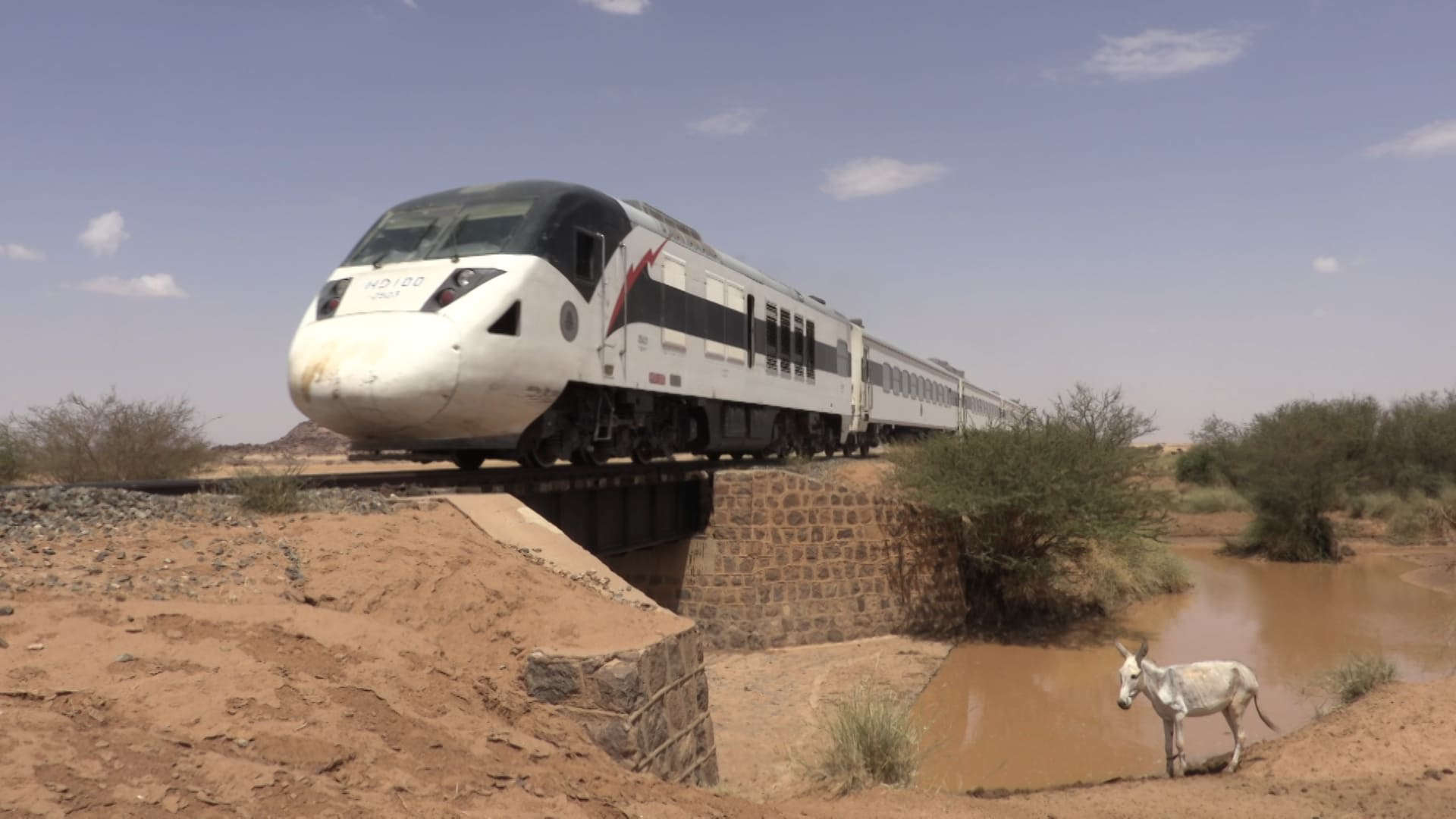 Sudan 2 (11)